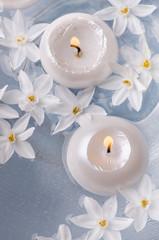 candele galleggianti con fiori narcisi bianchi