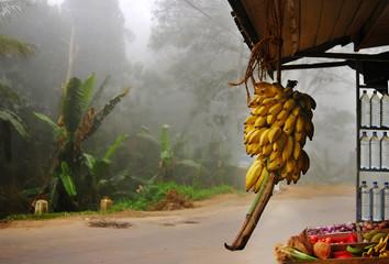 asian market on palms background