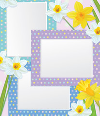 Vector empty photo frames with daffodils.