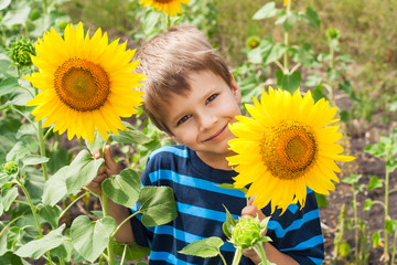 Little boy with sunflower