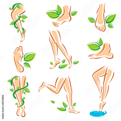 Healthy legs set. Vector