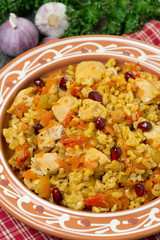 pilaf with vegetables, chicken and pomegranate