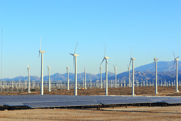 Solar and Wind Energy, Palm Springs, CA