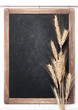 Wheat ears on vintage chalkboard