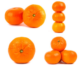 Set of mandarine isolated