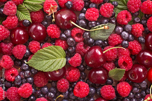Wild berries background