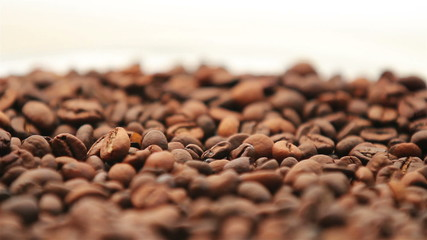 Coffee beans background rotation