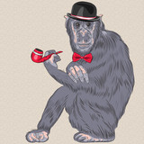 vector funny cartoon hipster monkey