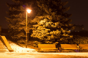 Winter city landscape. Evening Park with Lantern