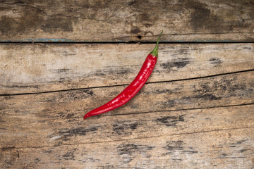 One Red Chilli Pepper on Grunge Wood board