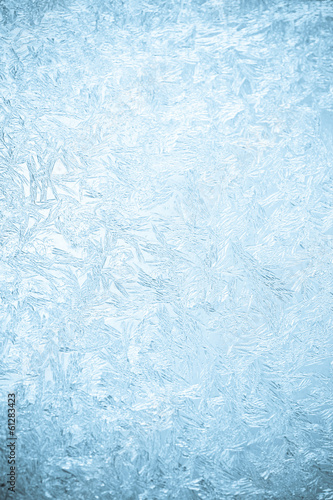 canvas print picture Icy flowers