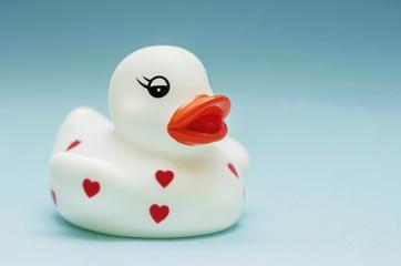 White Rubber Duck