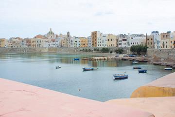 Cityscape and coastline