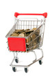 The shopping cart with yellow coins