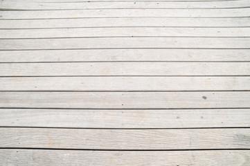 Wood Pattern Trunk Texture