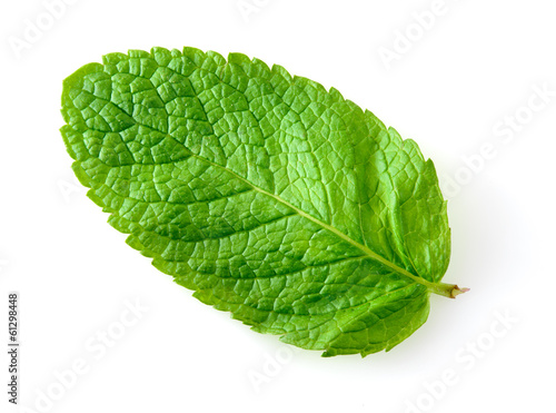 Fresh mint leaf isolated on white. Macro