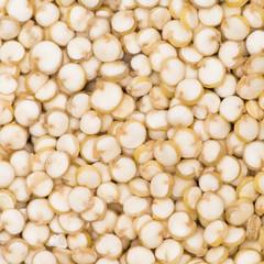 Quinoa Texture
