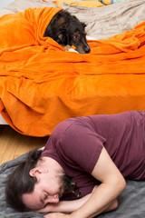 Hund im Bett, Mann auf dem Boden