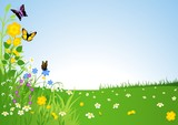 Spring Meadow - Cartoon Background