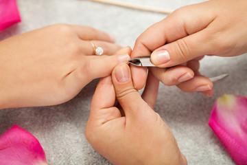 Spa salon. Manicure.