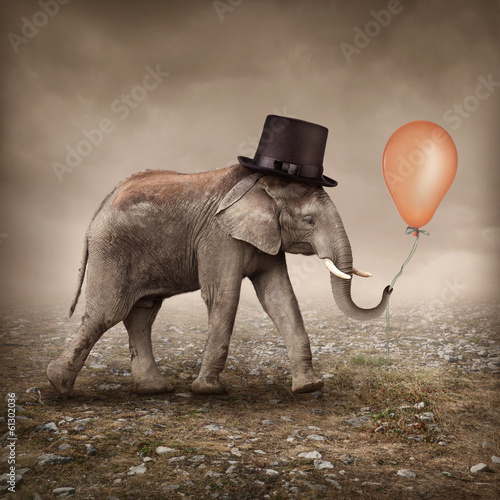 Foto op Canvas Foto van de dag Elephant with a balloon