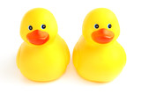 Pair of cute yellow bath time ducks