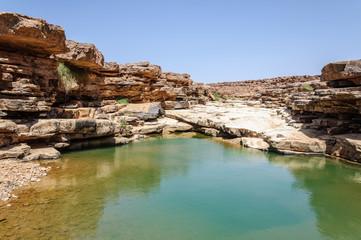 Morocco, Draa valley, pond