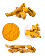 Collections of Turmeric root on white background