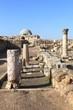 The Amman Citadel
