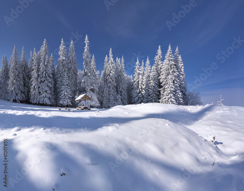 Winter fairy tale after heavy snowfall in the mountain forest