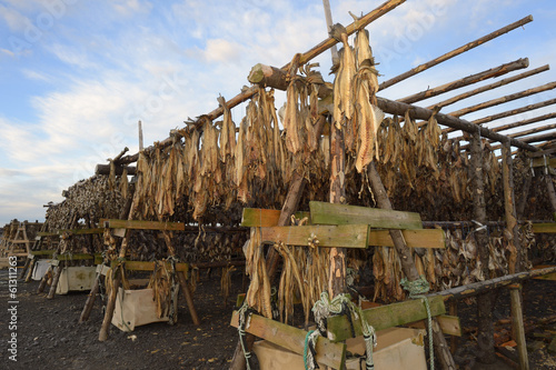 Fish drying on wooden construction.
