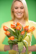 Orange spring tulips woman in background