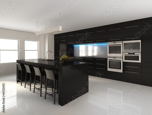 Contemporary minimal black and white kitchen
