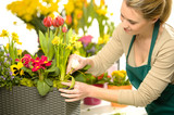 Florist arrange spring flowers colorful