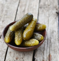 pickled cucumber, russian traditional   appetizer