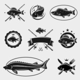 Fish stamps and labels set. Vector