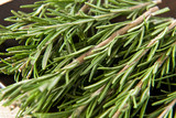 Sprigs of fresh rosemary