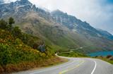 Fototapety New Zealand Scenic Road