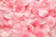 Obrazy na płótnie, fototapety, zdjęcia, fotoobrazy drukowane : Beautiful delicate pink rose petals