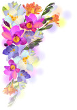 Spring card with gentle freesia flowers