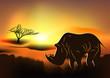 Africa. Rhinoceros
