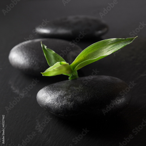 zen stones and bamboo