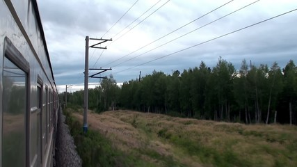 View of the taiga from the passenger train