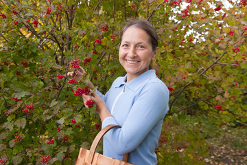 woman  near guelder rose bush