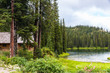 Log Cabin in Pine Forest by Lake - 61331074