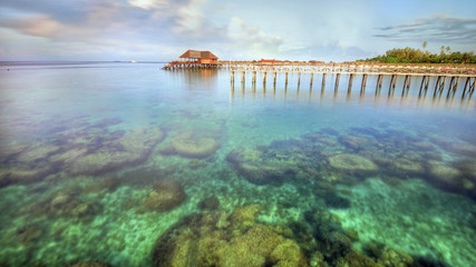 Long pier dan beautiful coral at Mabul Island