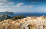 Adriatic Sea Coastal mountain landscape with dry grass on rock