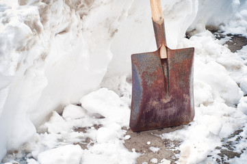 Old shovel in the snow