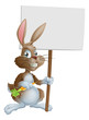 Cute Easter bunny rabbit carrot sign