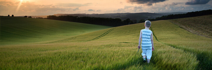 Concept panorama landscape young boy walking through field at su